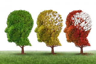 Alzheimer-66ev0n5vzxoph9rfxozycvsxvnoidks7m7r759ugul6