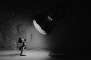 Cartoon-donald-duck-spotlight-3706-530x350